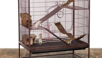 11 Best Chinchilla Cages 2021